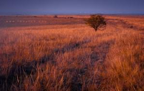 Осенние холмы днём и на закате