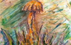 Степной гриб